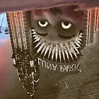 Luna Puddle by Stephen Denham