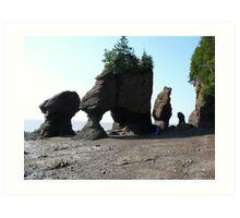 The Hopewell Rocks Art Print