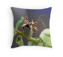 Assasin (Pristhesancus plagipennis) Throw Pillow