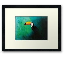 Wildlife - Toco Toucan Framed Print