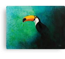 Wildlife - Toco Toucan Canvas Print
