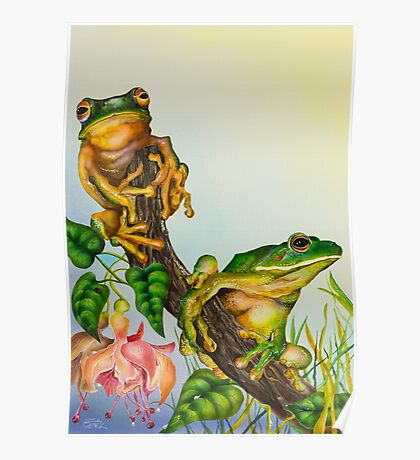 Wildlife - Green Tree Frogs Poster