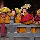 Novice monks by David Reid
