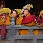 Novice monks by David Reid