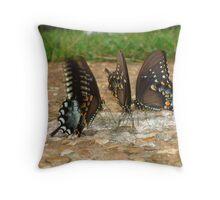 Butterfly Buffet Throw Pillow