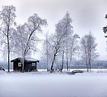 Winter's dress by LadyFi