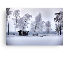 Winter's dress Canvas Print
