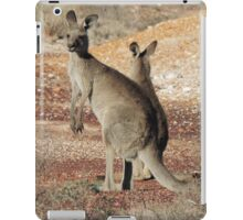 Kangaroos - White Cliffs iPad Case/Skin