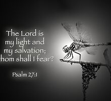 The Lord is my light and my salvation . . . by Bonnie T.  Barry