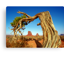 Monument Valley Tree Canvas Print