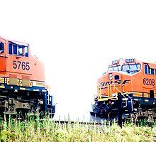 BNSF Numbers 5765 & 6208 by Rod  Adams