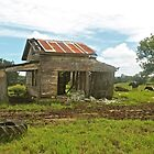Old Shack by Ron Finkel