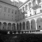 Boston Public Library, courtyard by colleenboston