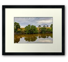 Sweet Reflections Framed Print