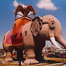 Lucy the Elephant by Steven Godfrey