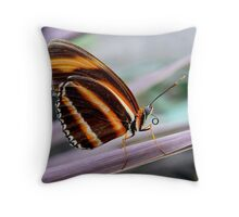 BUTTERFLY POSE #3 Throw Pillow