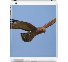 Flying brown goshawk - 2h iPad Case/Skin