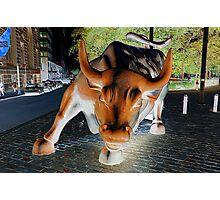 charging bull Photographic Print