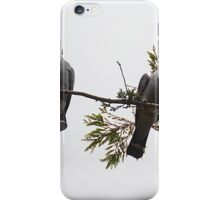 A pear of topknot pigeon iPhone Case/Skin