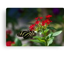 Garden Visitor Canvas Print