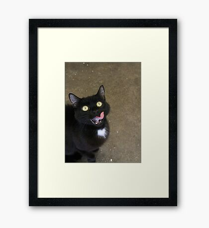 Wishful  Winnie Framed Print