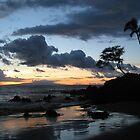Maui Sunset by Hank Rodriguez