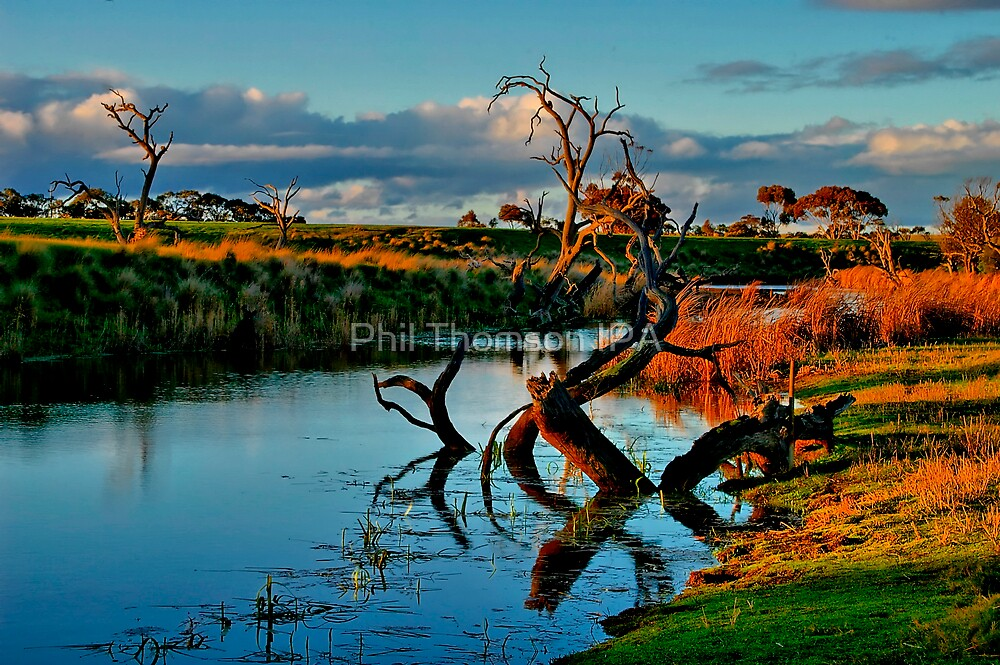 """""""Evening Mirror"""" by Phil Thomson IPA"""