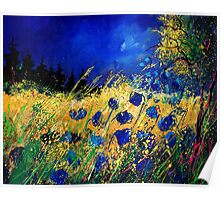 Cornflowers 450908 Poster