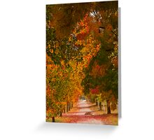 Bright Path Greeting Card
