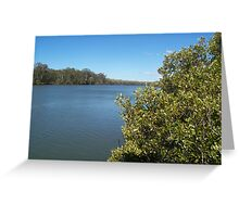 Boondall Wetlands Greeting Card