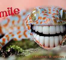 Smile and annoy someone by Simon Downing snr