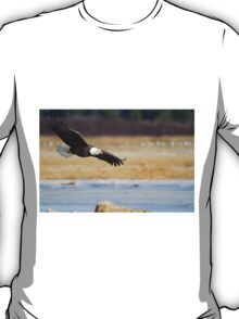 Watch out bald eagle T-Shirt