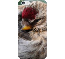 Ball of Feathers iPhone Case/Skin