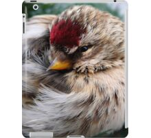 Ball of Feathers iPad Case/Skin