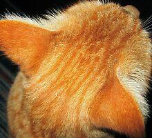 Felix As The True Redhead He Is by HELUA