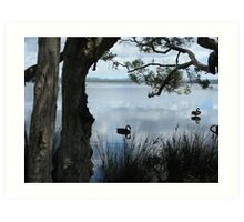 Myall Lakes, NSW, Australia. Art Print