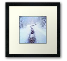 Sheep and snow  Framed Print