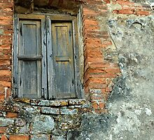 Brick Wall, Tuscany, Italy by fauselr