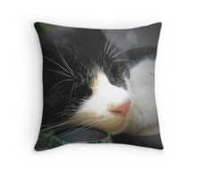 Mellow Dreams Throw Pillow