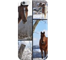 Winter Meadow iPhone Case/Skin