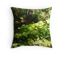 Colours of spring Throw Pillow