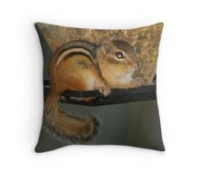 little theif Throw Pillow