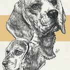 Beagle, Father & Son  by BarbBarcikKeith
