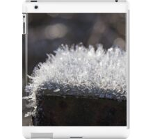 Hoar Frost on Rusted Post iPad Case/Skin