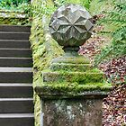 ' Dark Steps ' at Dawyck Botanic Gardens near peebles by rosie320d