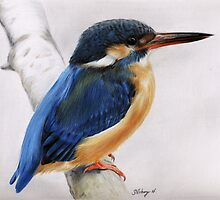 kingfisher by Samantha Norbury