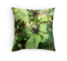 ORB STRETCH SPIDER-META MERIANAE Throw Pillow