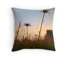 Sunsetting Daisy Throw Pillow