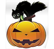 Black cat on pumpkin Poster