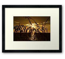 Sunrise on the Dune Framed Print